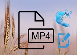 how to cut mp4 video files