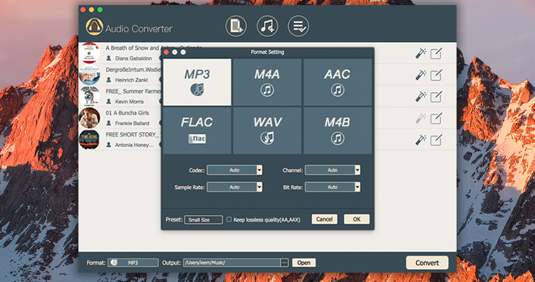 DRM Audio Converter for Mac