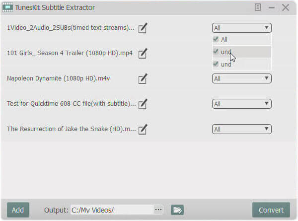 set subtitle settings