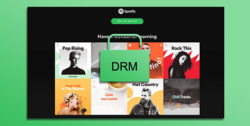 Spotify Music DRM Removal Tips & Tutorials