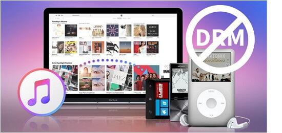 Hot Review Ondesoft Audiobook Converter For Mac - camfortstaff's diary