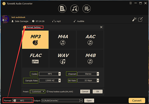 output format setting audio converter