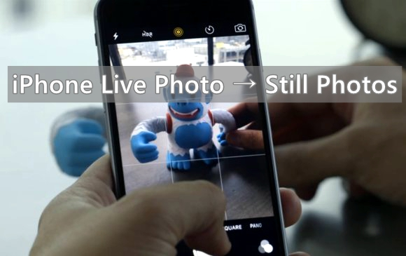 turn iphone live photos to still